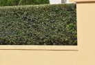 Ashby Heights Decorative fencing 30